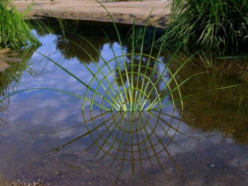 Природная геометрия Людовика Фессон (20 фото)