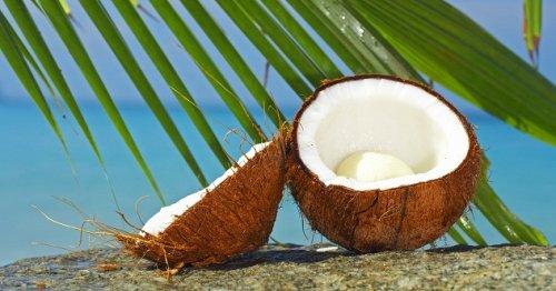 10 Прикольных фактов о кокосах