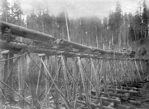 Деревянные мосты-эстакады начала прошлого века (5 фото)