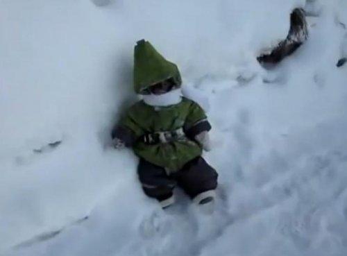 Японский макак Иван на зимней прогулке
