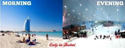 Тем временем в Дубае… (17 фото)