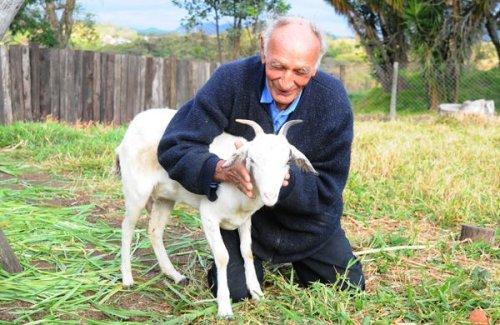 Бразильский мужчина собирается жениться на своей козе в Церкви Дьявола