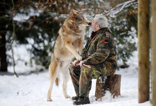 Примеры невероятной дружбы между человеком и диким животным (23 фото)