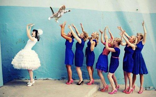 Новый фото-мем: летающие коты вместо свадебных букетов (15 фото)