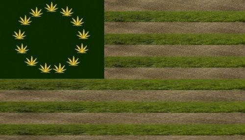 Топ-10 Интересных фактов о марихуане