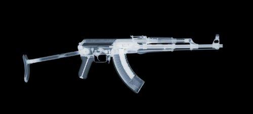 Рентгеновские снимки оружия (16 фото)