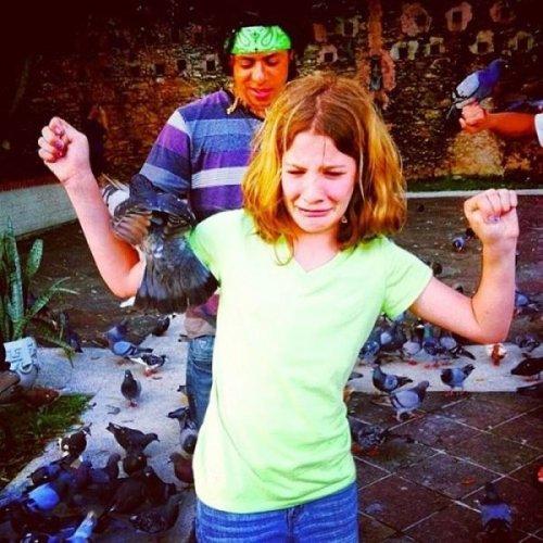 Прикольные моменты из жизни голубей (21 фото)