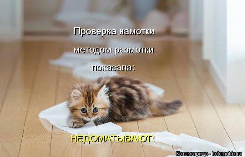 Новые котоматрицы (29 шт)