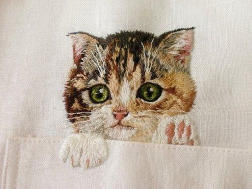 Котята в нагрудных карманах (14 фото)