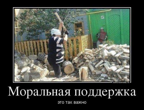 Новых демотиваторов пост (12 шт)