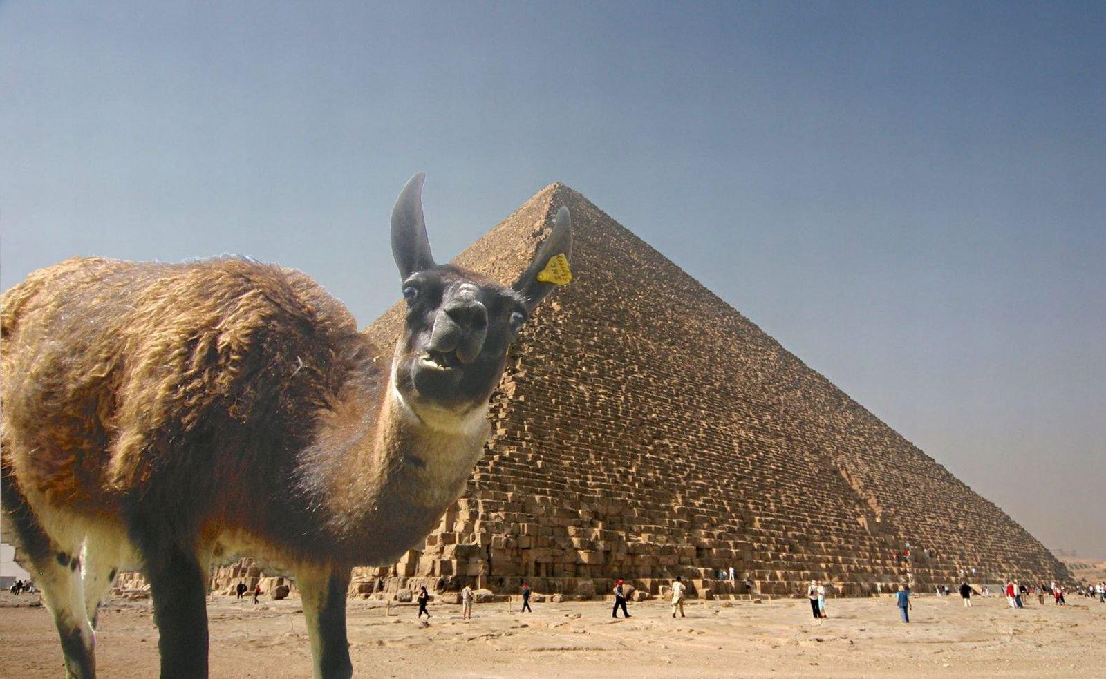 Пирамида картинки смешные