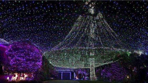 Семья из Австралии установила рекорд Гиннесса, соорудив рождественскую инсталляцию из 502 165 лампочек