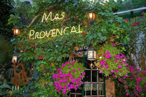 «Ма Провонсаль» - идеальный ресторан для любителей цветов (8 фото)