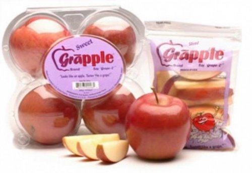 Яблоград – уникальное яблоко, которое обладает вкусом винограда сорта Конкорд (3 фото)