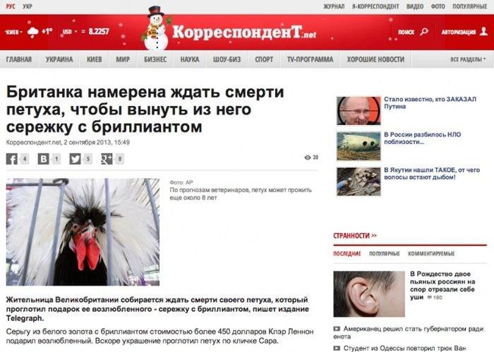 Шахматные новости россия