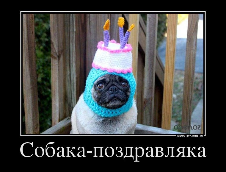 Демотиваторы день рождения подруга