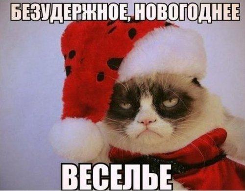 Порция новогоднего юмора.