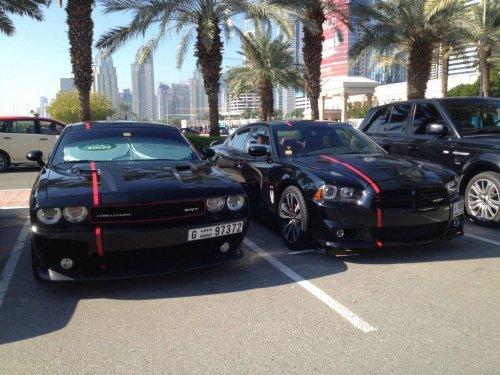 Как выглядит стоянка для машин при колледже в Дубае (15 фото)