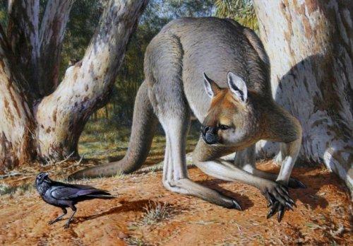Топ-10 Огромных вымерших версий очаровательных животных