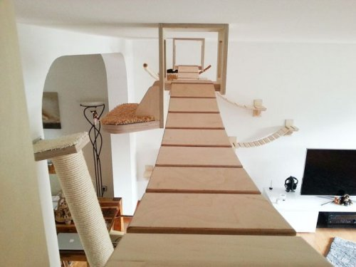 Игровая площадка для кошек в комнате (10 фото)