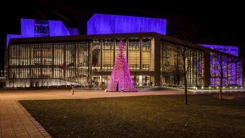 Необычная рождественская ёлка в Будапеште (18 фото)