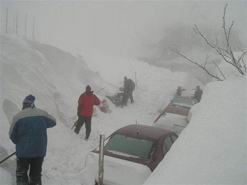 Снежный апокалипсис в Ростове-на-Дону (33 фото)
