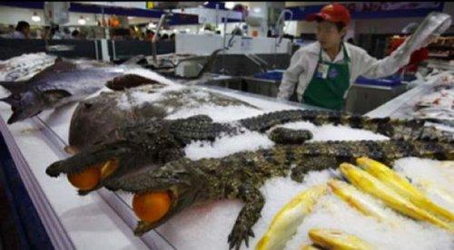 Что можно купить в китайских магазинах (14 фото)
