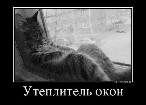 Новых демотиваторов сборник (15 шт)
