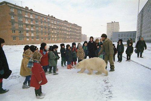 Тем временем в России… (33 фото)
