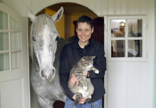 Доктор делит свой дом с лошадью после шторма (15 фото)