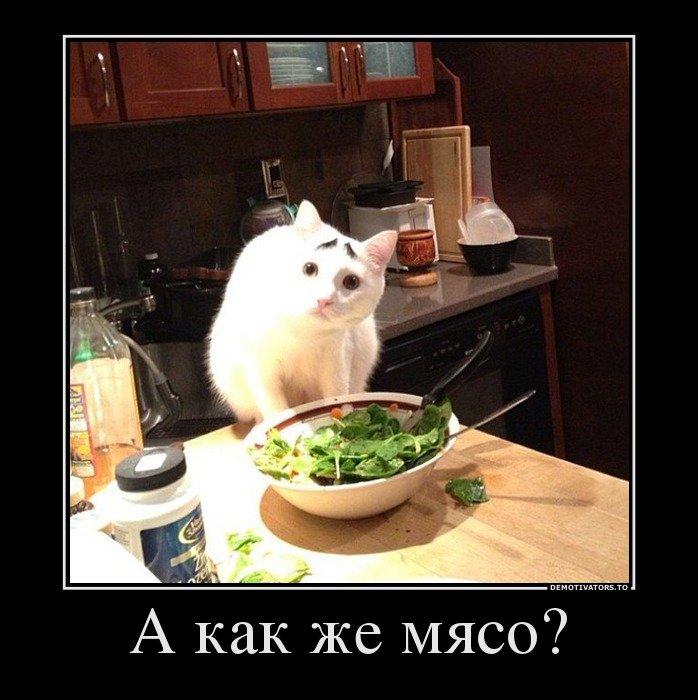 хочу есть демотиватор