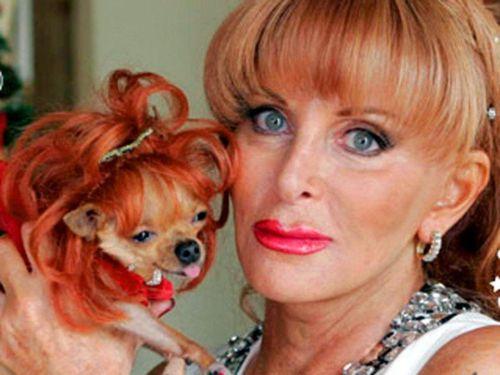 Топ-10: Люди, которые оставили своим собакам огромное состояние