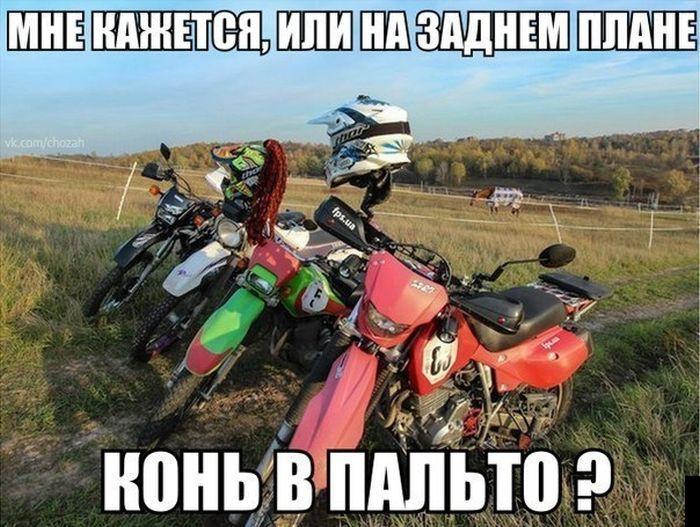 фотки мотоциклов мемы