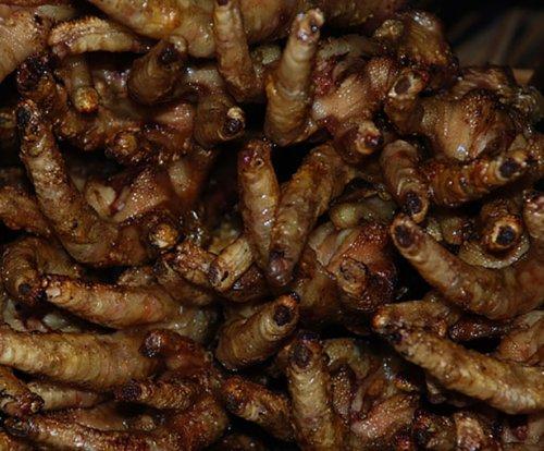 8 Отвратительных вещей, которые едят люди со всего мира