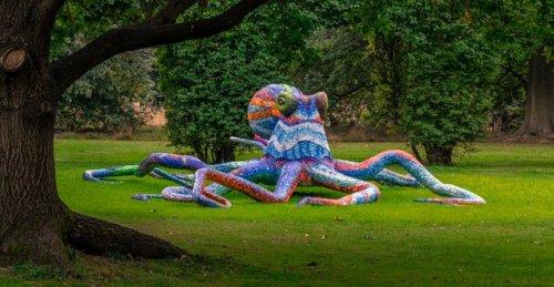Гигантский осьминог Марии-Луизы Тадей (12 фото)