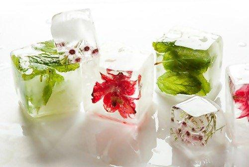 Оригинальные идеи использования формочек для льда (24 фото)