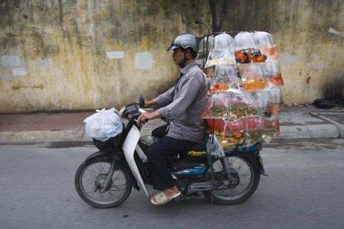 Сумасшедшие грузоперевозки по-вьетнамски (10 фото)