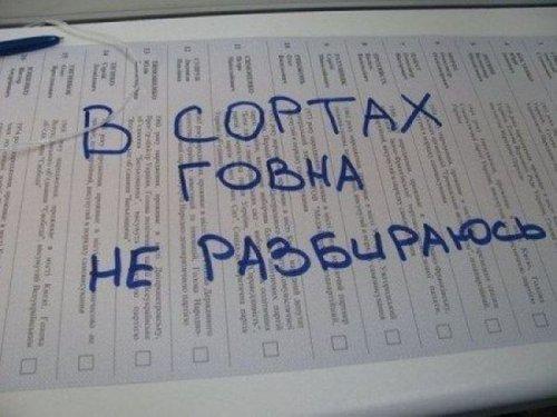 Избирательные бюллетени, которые не будут подсчитаны (21 фото)