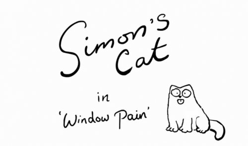 Кот Саймона и мытьё окон
