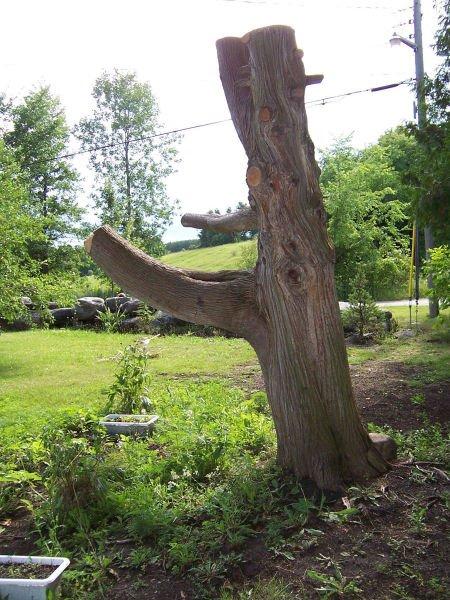Из высохшего дерева – в арт-объект с помощью бензопилы (5 фото)