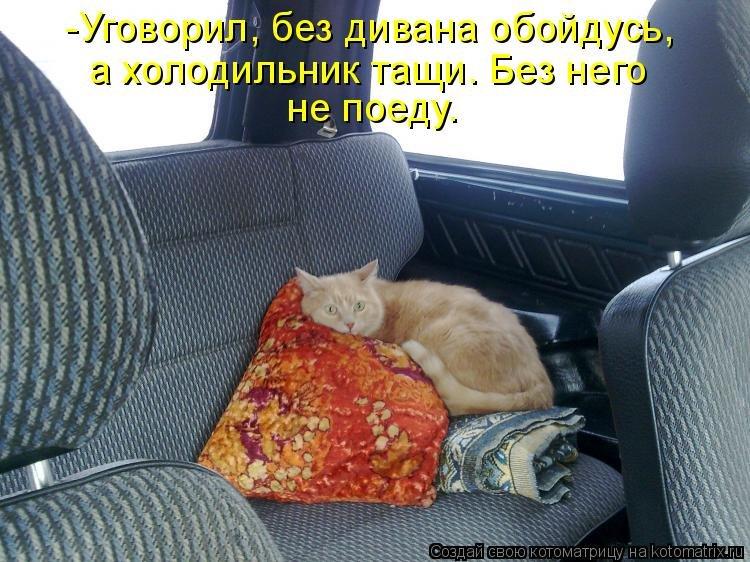 http://www.bugaga.ru/uploads/posts/2014-06/1402037267_kotomatricy-15.jpg