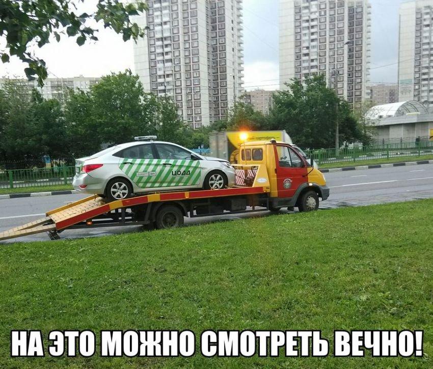 смешные картинки с авто и автолюбителей комплект или набор
