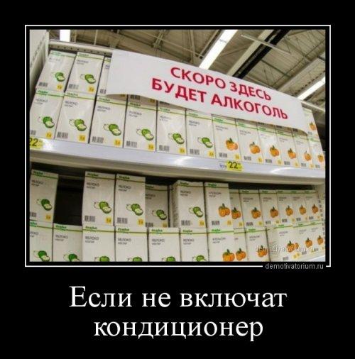 Сборник демотиваторов (13 шт)