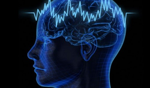 Топ-25 Интересных фактов о сне, о которых вы и не подозревали
