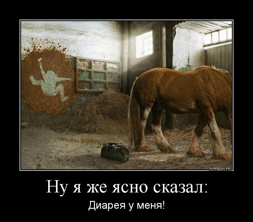 Демотиваторы-приколы (18 шт): www.bugaga.ru/jokes/1146744940-demotivatory-prikoly.html