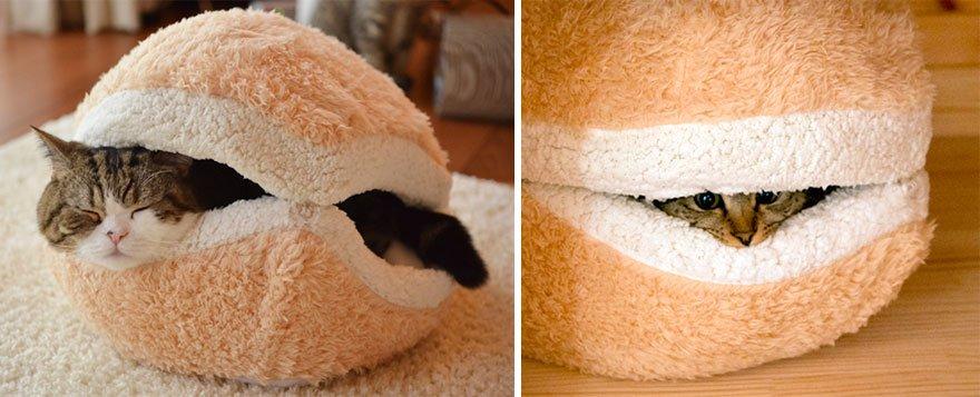 Уютный домик для кота