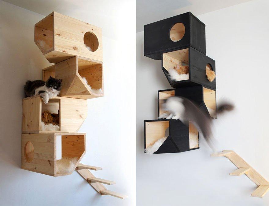 Мебель для котов своими руками фото