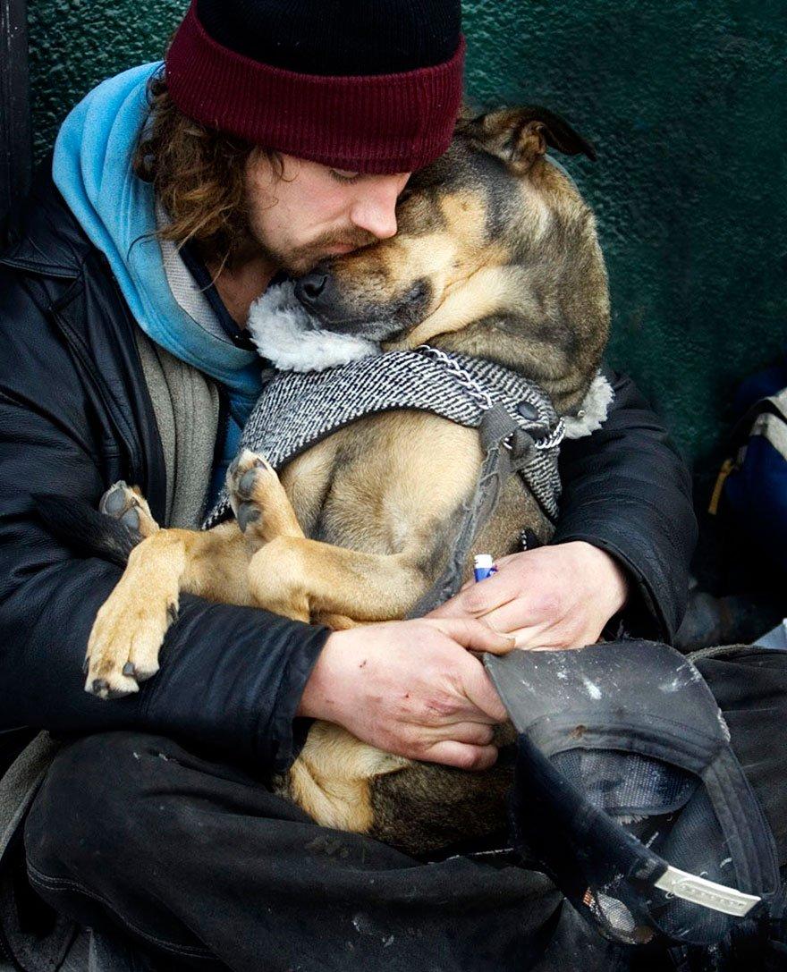 Бродячие собаки и их хозяева (15 фото)