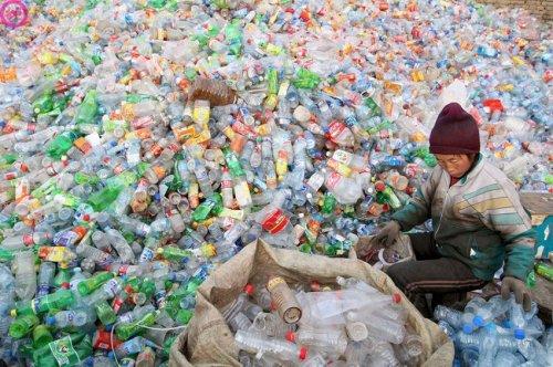 Сроки разложения разных видов мусорных отходов (15 фото)