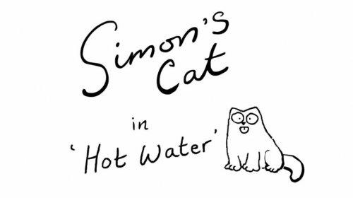 Кот Саймона: Горячая вода